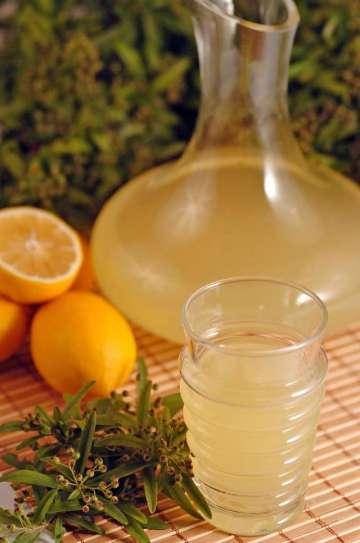 Girit Usulü Limonata Tarifi