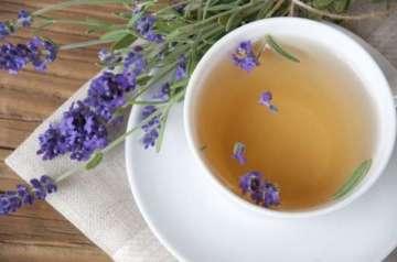 Kurutulmuş Lavantalı Çay Tarifi