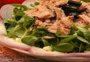 Tonbalıklı Semizotu Salatası Tarifi